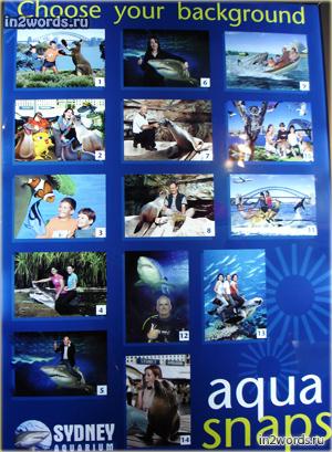 Прогулка по аквариуму. Вход, декорации, места для фото и антураж. Сидней, Австралия.
