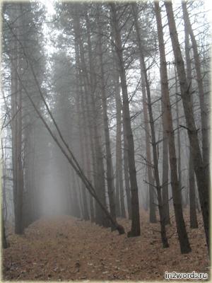 Таинственный туман, прекрасная и страшная неизвестность